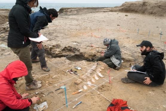 Paleontólogos de diversos países se reúnen en Puerto Madryn