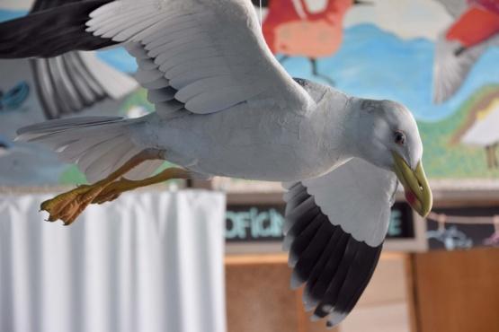 Realizaron exposiciones sobre conservación del hábitat