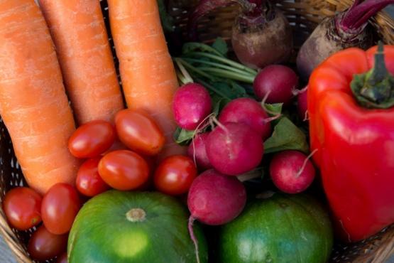 Se incorporan al Código Alimentario Argentino las Buenas Prácticas Agrícolas en frutihorticultura