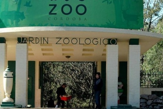 Zoológico de Córdoba: una jauría mató a 20 ciervos
