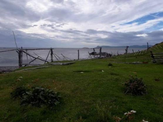 Debatirán la creación del área natural protegida Península Mitre