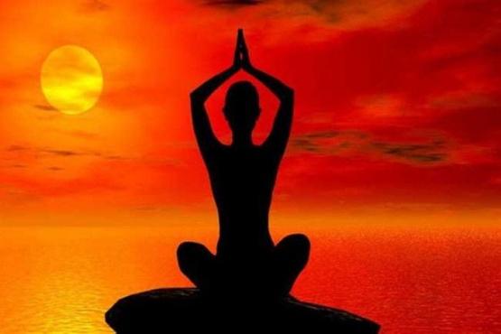 Que practican Yoga y meditan.