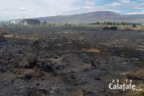 Ardieron dos hectáreas en Punta Soberana