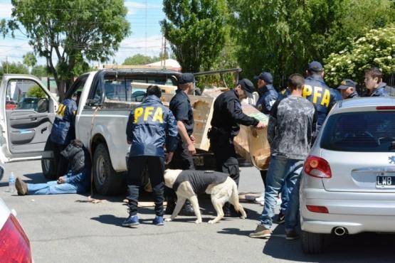 Tres detenidos y 15 kilos de marihuana secuestrados durante procedimiento de la PFA (Video)