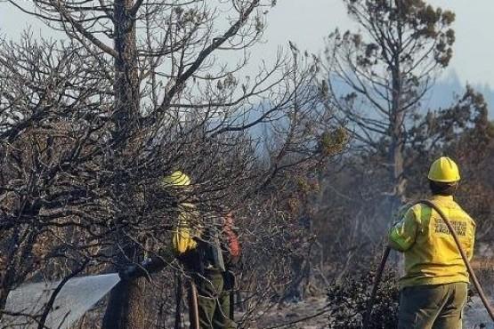 Millonaria inversión para la lucha contra incendios forestales