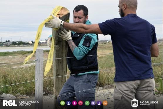 Agencia Ambiental está desarrollando tareas en la Laguna Ortiz