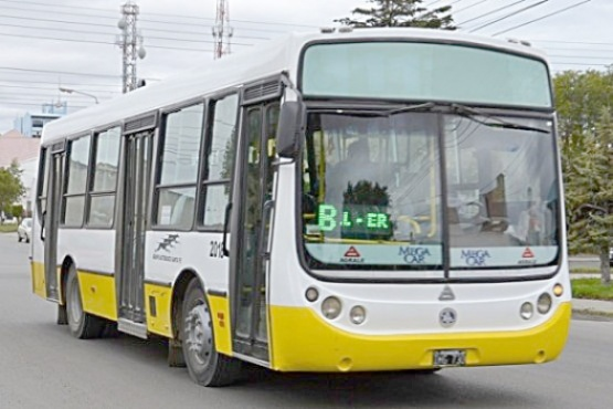 Se busca empresa: habrá segundo llamado a licitación por el transporte urbano
