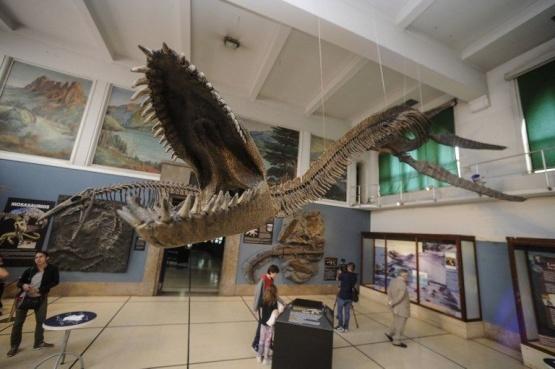 Se presentó en Buenos Aires una réplica 3D del Plesiosaurio de El Calafate