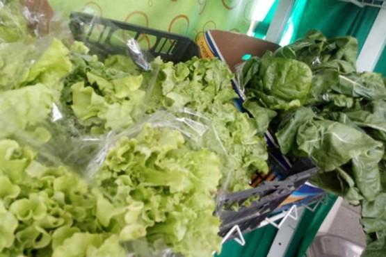 Productos orgánicos: Directamente del productor a la mesa del consumidor