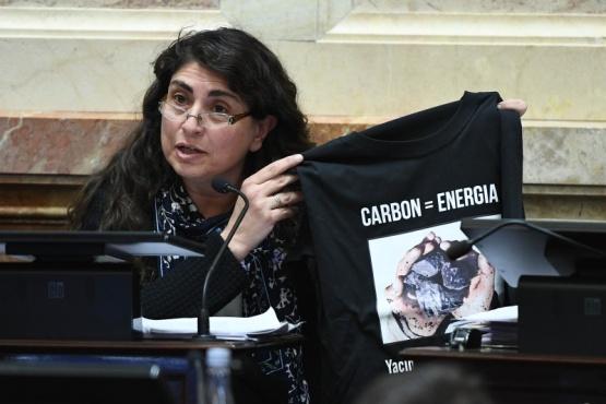 """""""Hemos visibilizado en el Congreso la lucha por los derechos de los santacruceños"""""""