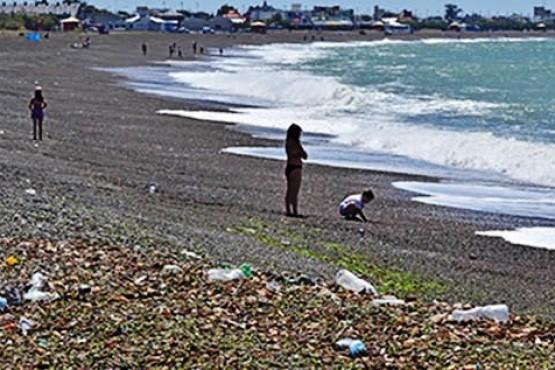 La playa parece basural: cajones de pescado, langostinos muertos y algas