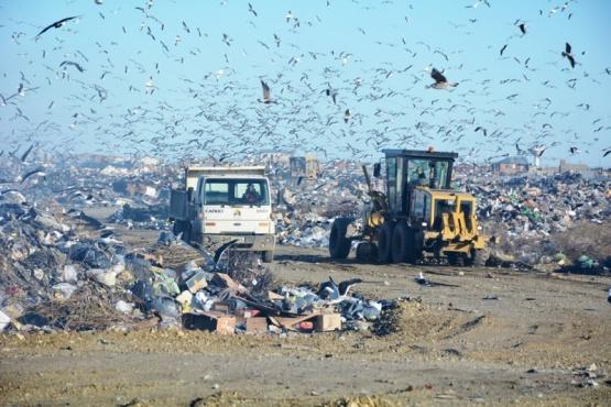 La problemática del medio ambiente en la ciudad capital es