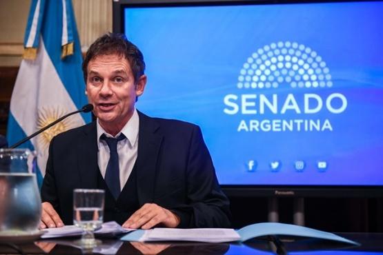 Cómo fue la actividad parlamentaria de los senadores y diputados por Santa Cruz