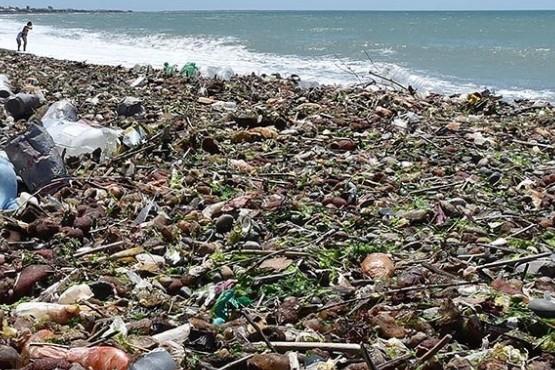 Pesca: quieren que un buque recolecte el excedente para que no lo tiren al mar