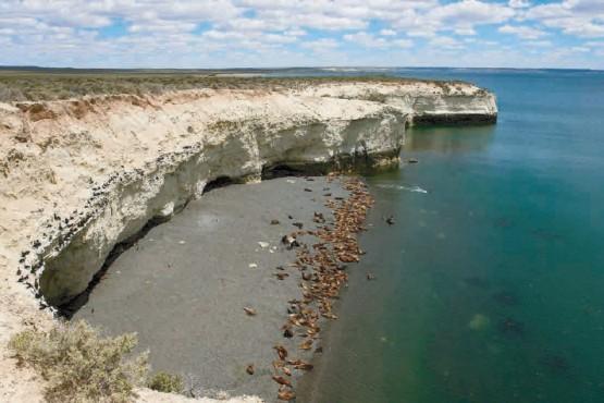 La reserva natural de Punta Loma cumplió medio siglo