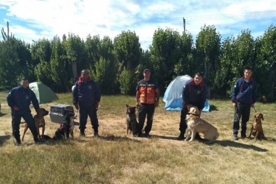 Se realizaron ejercicios con canes de búsqueda y rescate