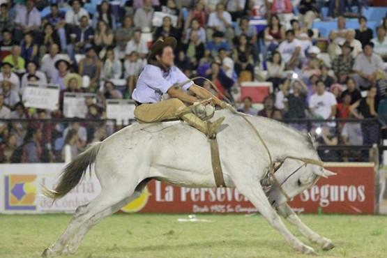 El Festival Jesús María sacrificó un caballo y ahora lo denuncian