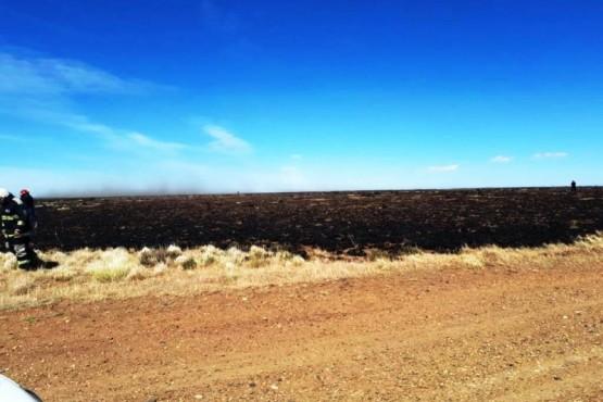 Sofocan fuego que arrasó con unas 35 hectáreas de pastizales