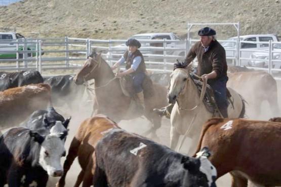 Aparte Campero: En febrero se concretará la instancia regional en la Sociedad Rural de Río Gallegos