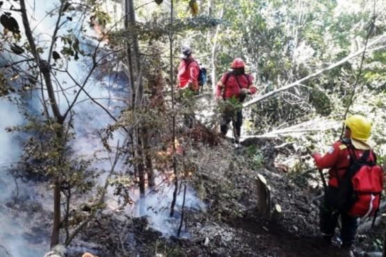 Suman refuerzos al operativo para controlar el incendio