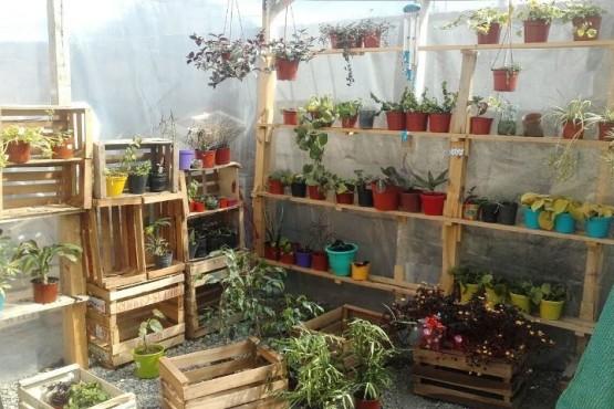 Feria Franca: un espacio de venta alternativo