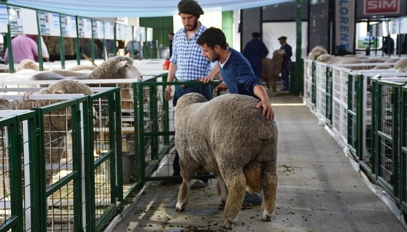 Año a año la expo de la Rural es más convocante.