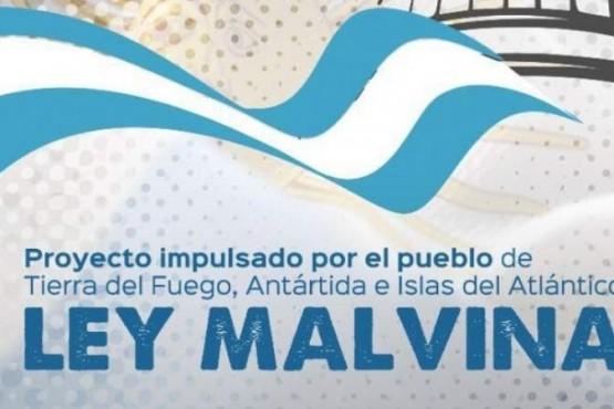 Bertone presenta el proyecto de Ley Malvinas
