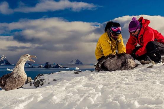 Guardaparques Nacionales en la Antártida. Ph Parques Nacionales.