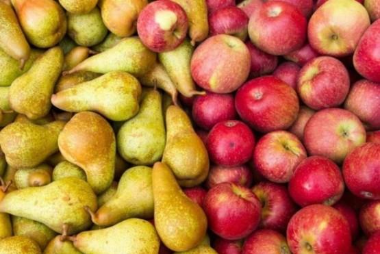 Brasil cerró el ingreso de peras y manzanas argentinas