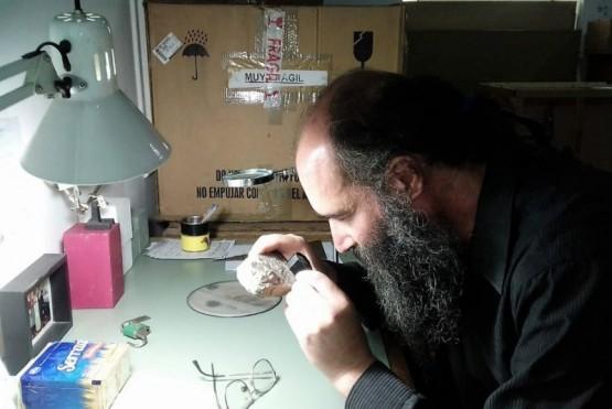 Entrega de ejemplares de insectos pertenecientes al periodo cretácico