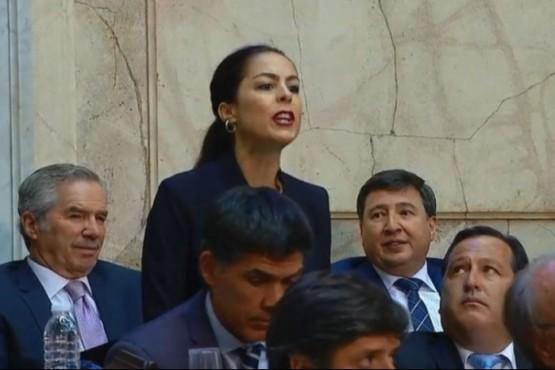 "El Gobierno demandará a la ""falsa diputada"" que interrumpió el discurso de Macri"