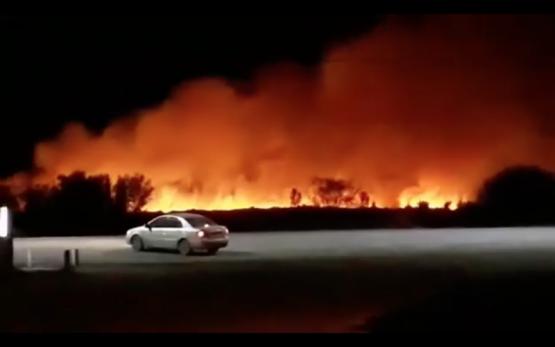 Incendio cerca de Río Colorado sobre la ruta 251