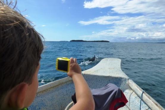 Avistamiento Responsable y Conservación de Cetáceos en Puerto Deseado