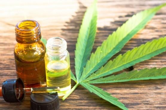 Cannabis: las gotas que ayudaron a la hija de Jorge