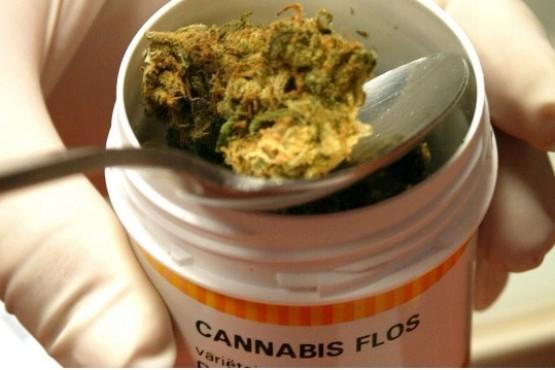 Ordenan a una obra social proveer aceite de cannabis