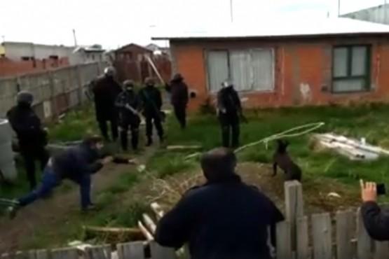 Mirá cómo se llevaban el pitbull que atacó a un vecino