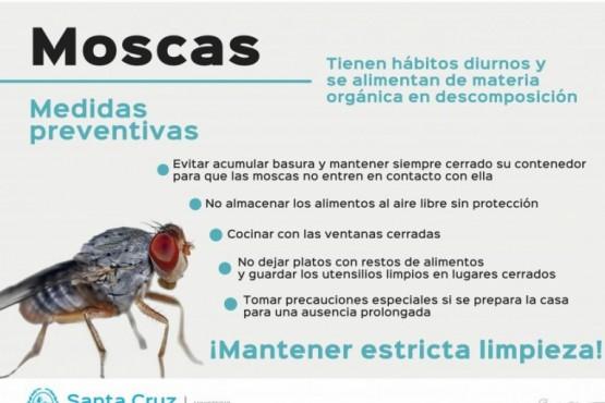 Recomendaciones para el uso de insecticidas
