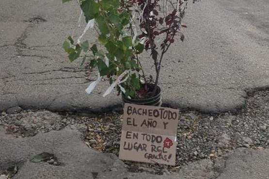 Cruces y denuncia por reclamo con plantación de árboles en baches