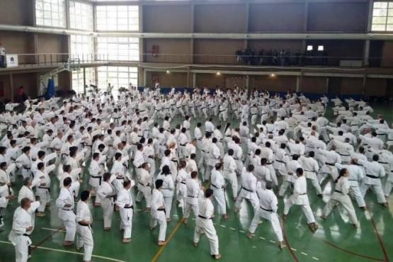 Acción para el karate do