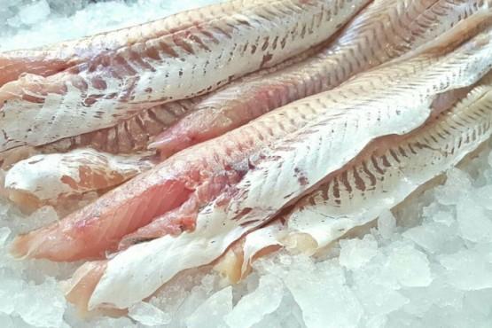 Cómo reconocer si el pescado es fresco