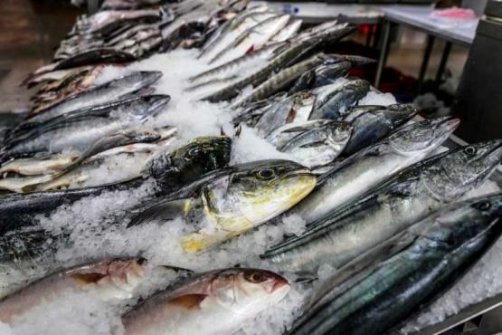 Qué tener en cuenta para el consumo saludable de pescado en semana santa