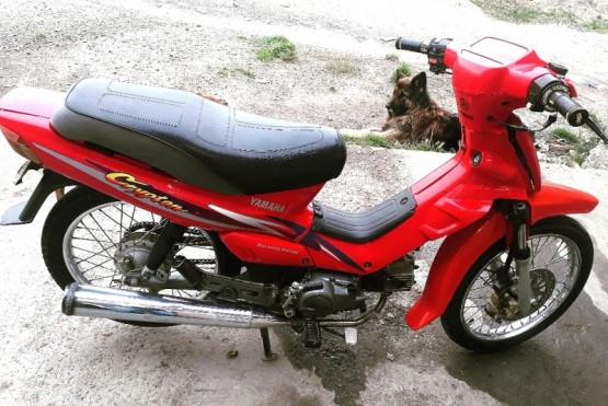 Ofrece recompensa para poder recuperar la moto que le robaron