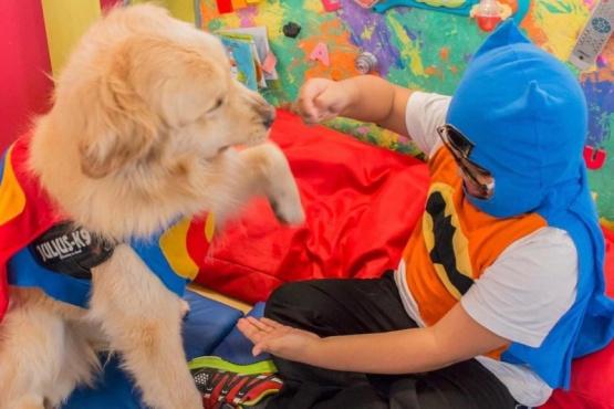 El Senado reconocerá el dispositivo de terapia asistida con perros