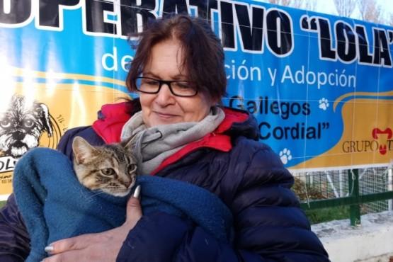 En el Día del Animal, comenzó el Operativo Lola 2