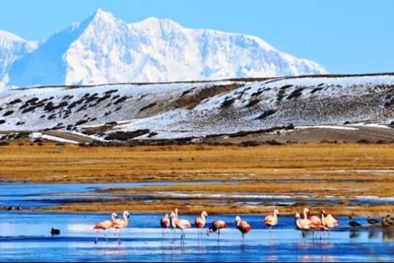 El Parque Patagonia fue impulsado el año pasado. Ahora será Reserva Natural.