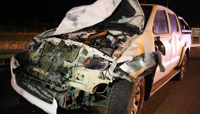 El caballo resultó gravemente golpeado y la rotura del frente de la camioneta da una dimensión del hecho. (C.G.)