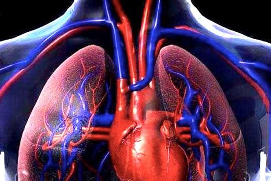 Hipertensión Pulmonar una enfermedad de difícil diagnóstico