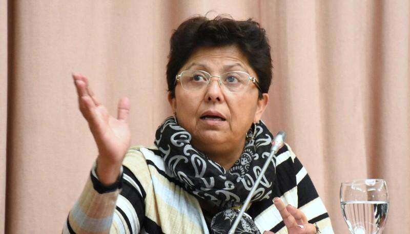 La diputada del Frente para la Victoria, Viviana Navarro.