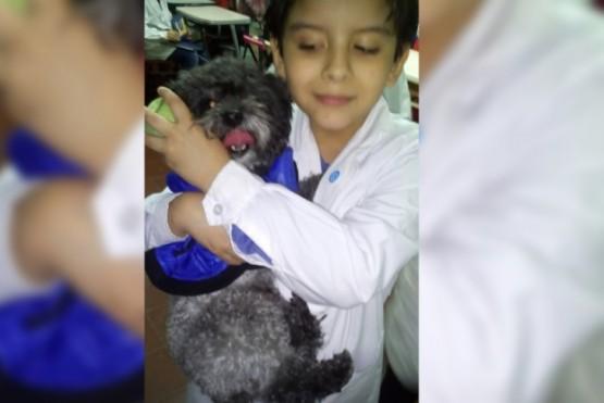 Un pequeño con autismo busca a su perrito