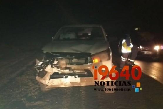 Camioneta municipal chocó un guanaco en la Ruta 3